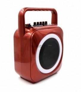 MP3 player speaker with USB and guitar amplifier function MOD: ELEA105