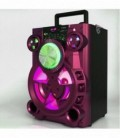 Karaoke Speaker with Bluetooth MP3 Player and LED Lights ELET810
