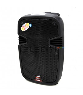 Loudspeaker Suitcase with Great Power and Sound Quality ELEA100-5
