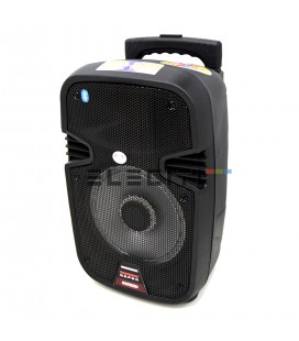Loudspeaker Suitcase with Karaoke and Bluetooth connection + LED lights ELEPSL07
