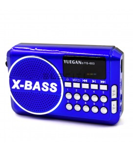 FM Radio with Bluetooth and USB Wireless Functions ELEYG603